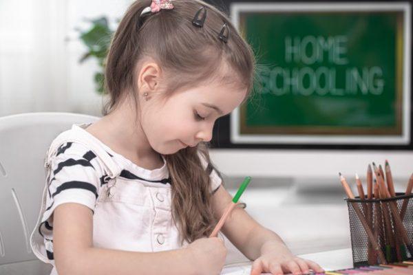 homeschooling program